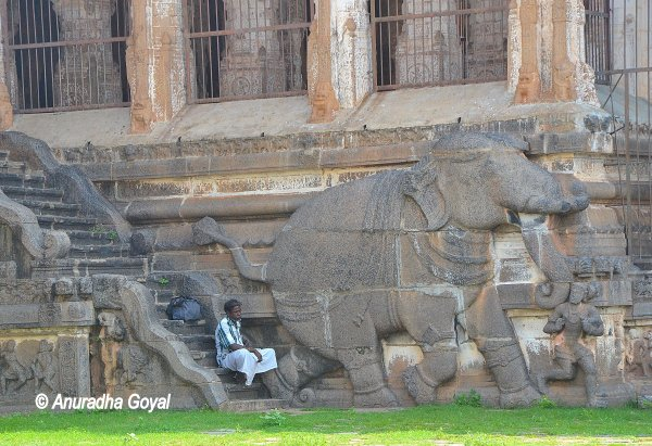 Elephant sculpture carved in stone on walls of Nataraja Temple or Chidambaram Temple
