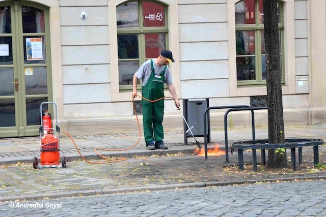 Morning cleaning in streets of Dresden Germany