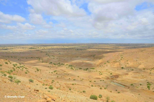 The vast expanse of Thar Desert