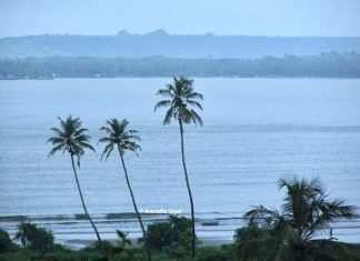 Typical view of Goa's landscape at Dona Paula