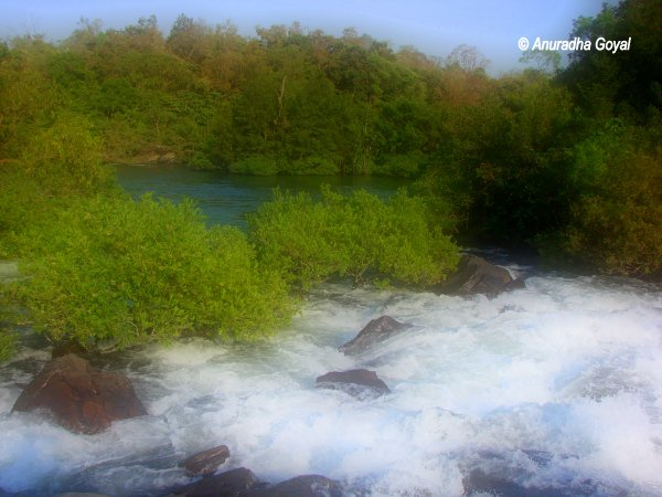 Gushing Kali River at Dandeli