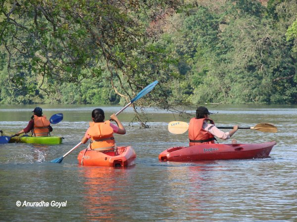 Kayaking water sports at Dandeli over Kali river