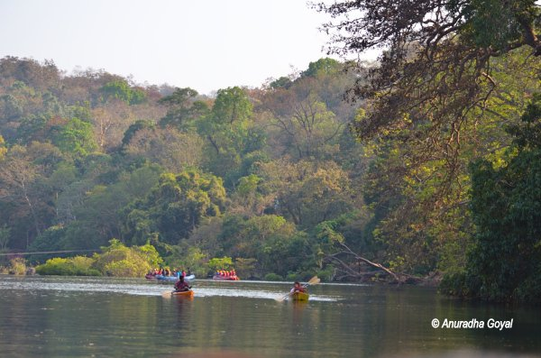 Water sports enthusiasts on Kali river at Dandeli