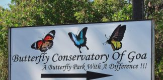 Butterfly conservatory nearby sign board