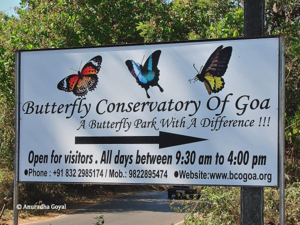 Butterfly conservatory nearby signboard