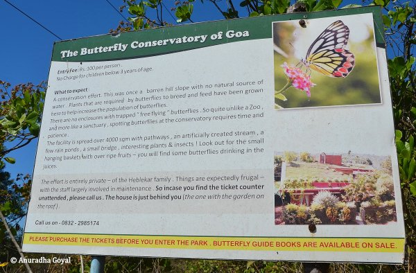 Butterfly Conservatory info board