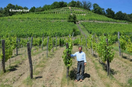 Klaus Zimmerling in his vineyard