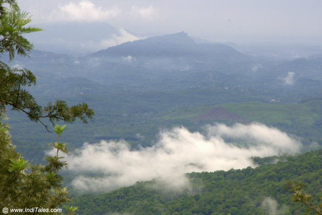 Atop the clouds at Ponmudi Hill Station