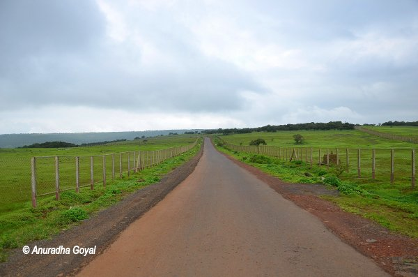 Road passing through barricaded heritage site Kaas Plateau
