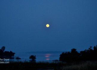 Moonlit Denwa Backwaters