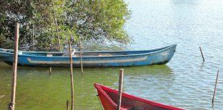Boats at Moira Backwaters