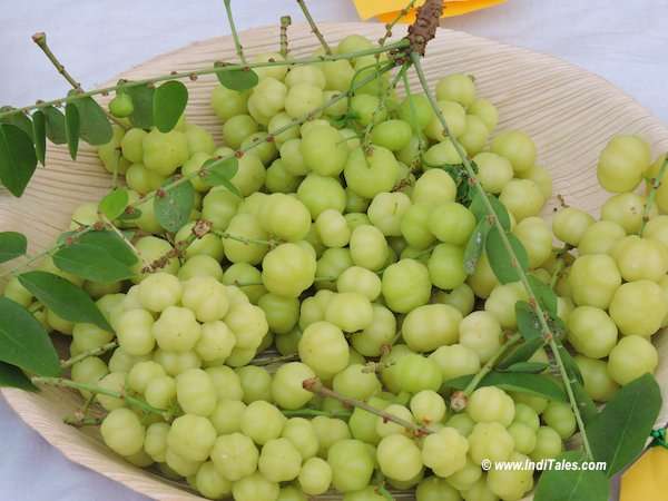 Amla or Gooseberry - Goa Summer Delights