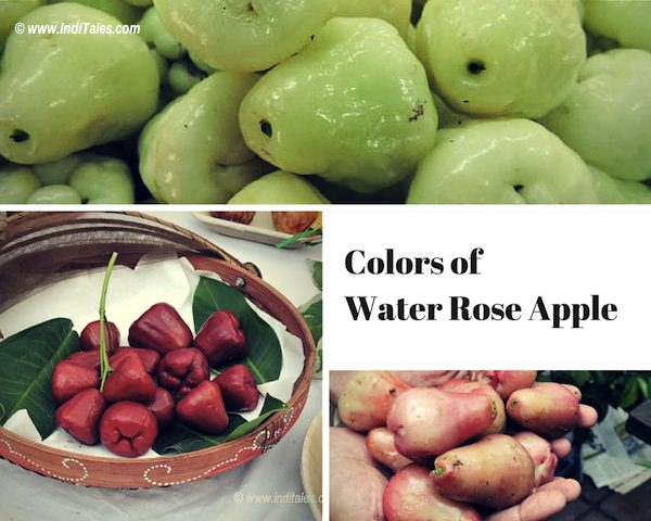 Water Rose Apple or Jaam - a Goa Summer Delights
