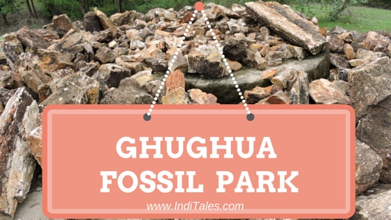 Ghughua fossil Park near Umaria in Madhya Pradesh