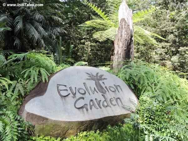 Evolution Garden at Singapore Botanic Gardens