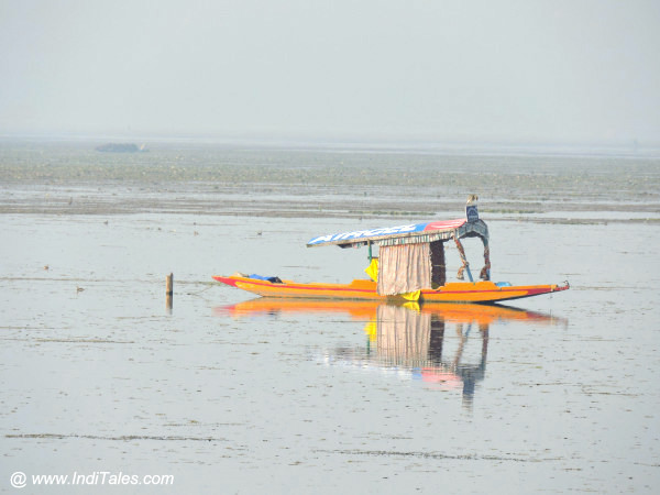 Shikara parked in the middle of Dal Lake