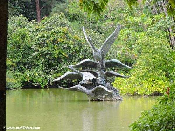 Swan Lake at Singapore Botanic Gardens