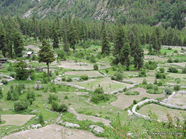 Landscape of the Sangla Valley, Himachal Pradesh