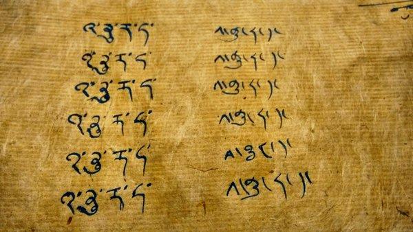 Anuradha Goyal in Bodhi Script
