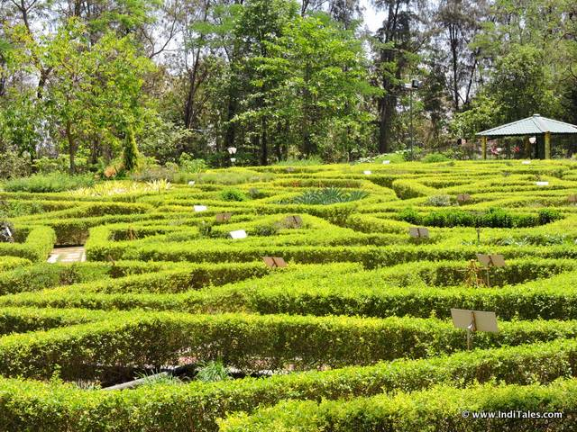 Herbal garden in the form of a labyrinth- Nakshatra Garden, Silvassa