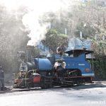 Steam Engine of Darjeeling Himalayan Railway