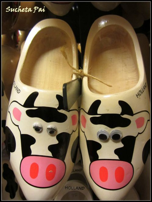 Cows painted on Clogs near Amsterdam