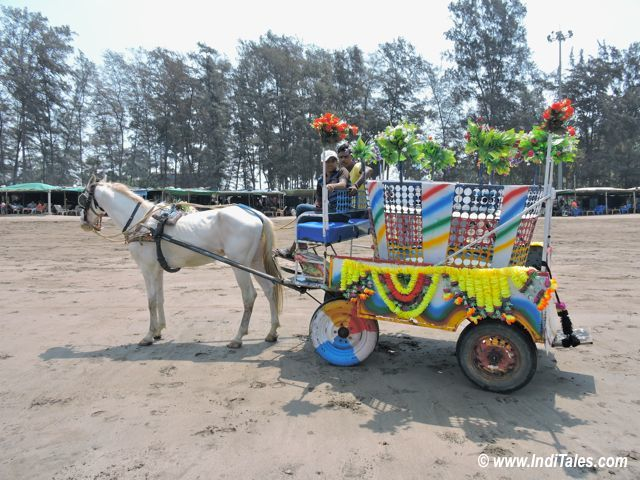 Colorful Horse Carts at Jampore Beach, Daman