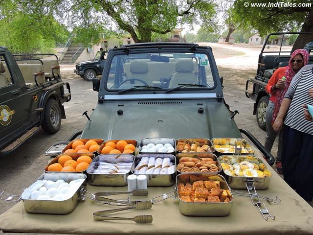 Jungle Breakfast at Pench National Park