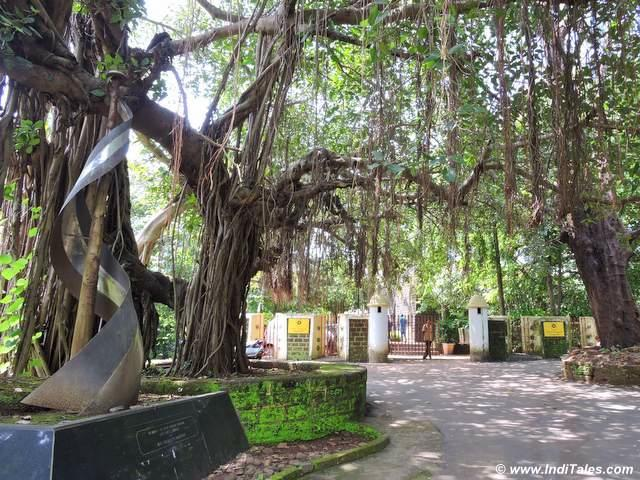 Memorial and giant Banyan tree at Tiracol fort entrance