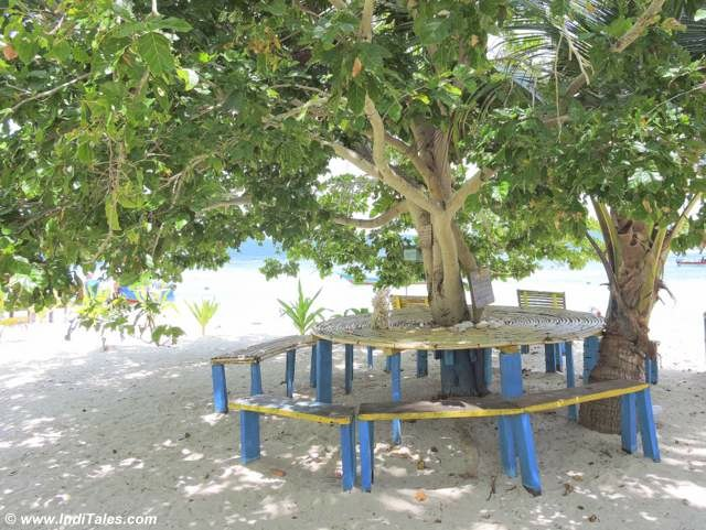 Bamboo table under the shade of a tree at Arborek Village, Raja Ampat