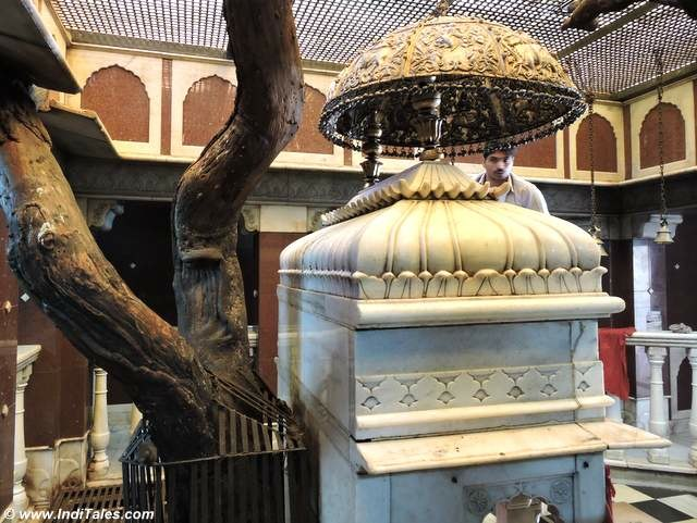 Other temple of Karni Mata with the tree planted by her