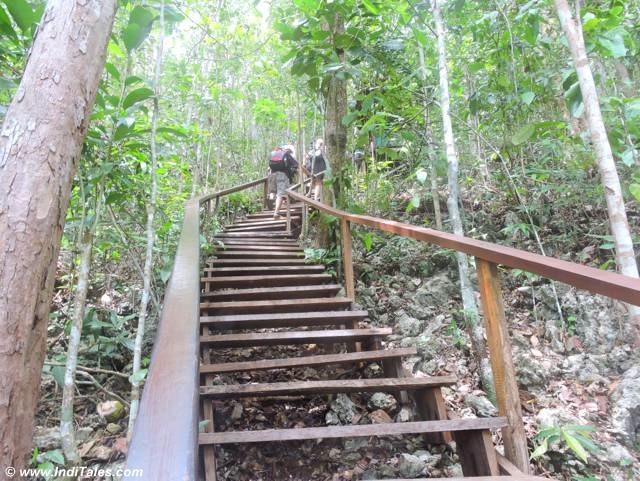 wooden staircase - star lagoon, pianemo islands, raja ampat, indonesia