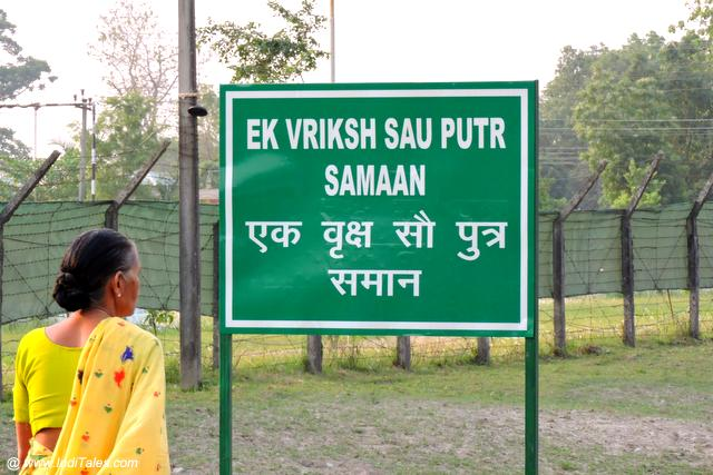 Conserve Trees message board at Jaldapara National Park