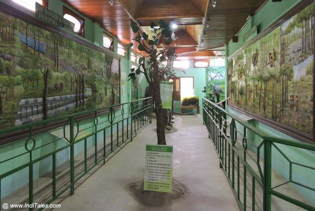Wildlife Interpretation Centre, Jaldapara National Park