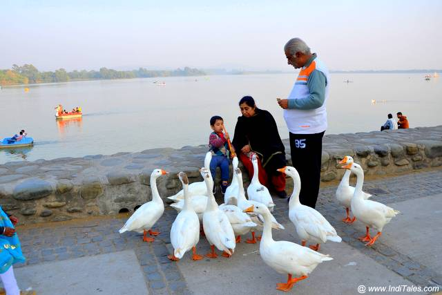 Sukhna Lake - Popular outing at Chandigarh