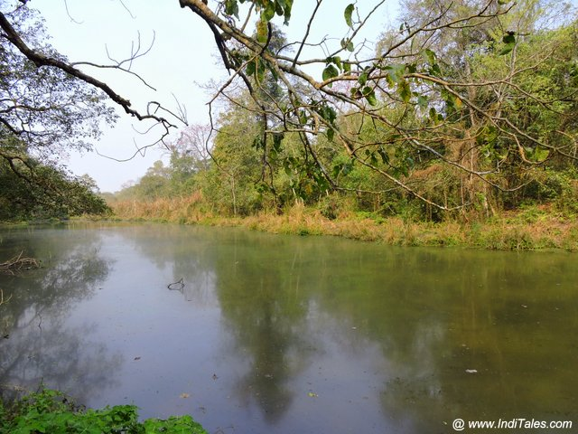 Small lake at Chitwan National Park