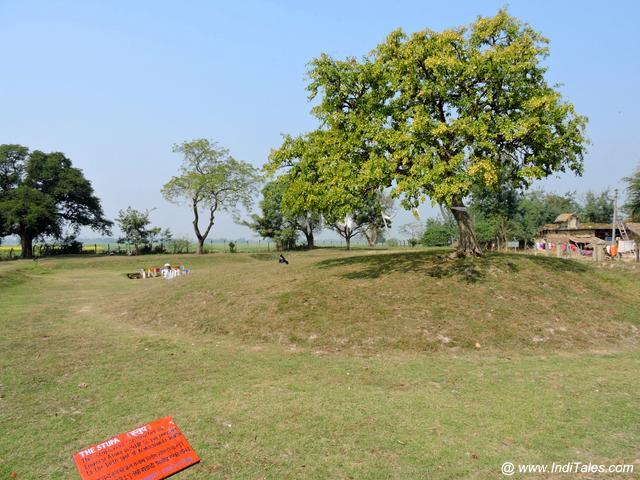 Karakuchhand Buddha Stupa at Gotihawa