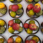Fruits - as Pune Street Food