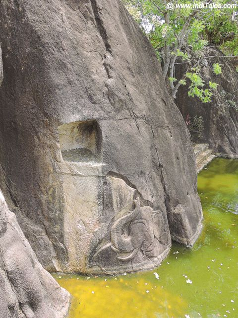Elephant carved on the rock of Isurumuniya