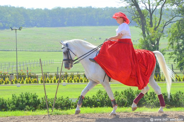 Lady rider at Equestrian Park near Budapest - Hungary