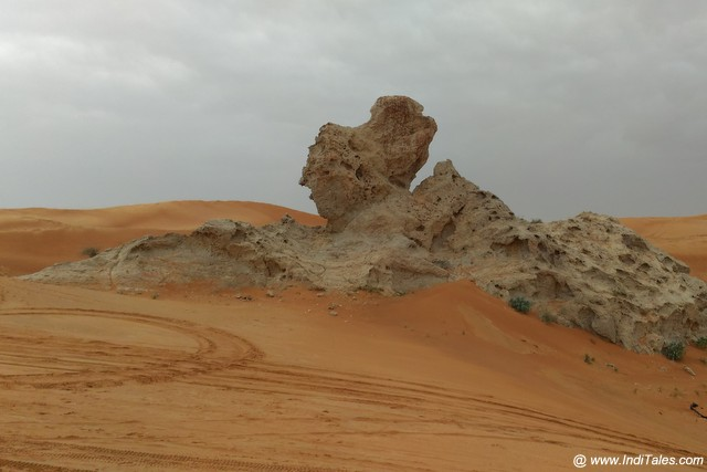 Camel Rock at Mleiha Archaeological Park