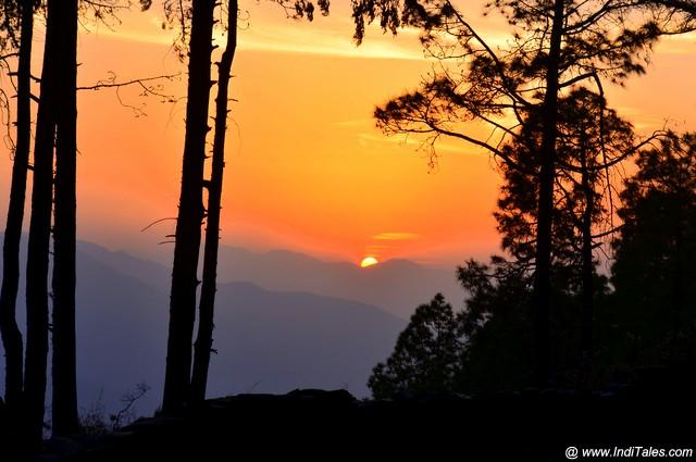 मुक्तेश्वर के जंगलों से सूर्यास्त