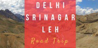 Delhi-Srinagar-Leh Road Trip