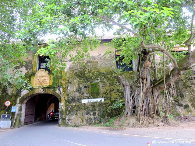Arch and the tree at the entrance of Galle Fort