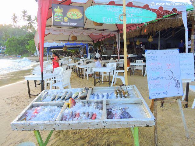 Fresh Fish being sold at Mirissa Beach