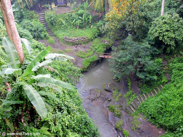 Campuhan Ridge Walk - Things to do in Ubud