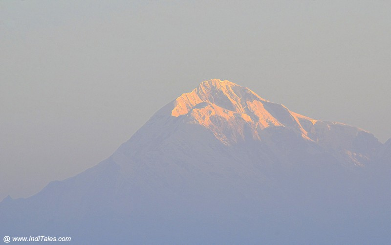Nanda Devi Himalayan peak view from Binsar