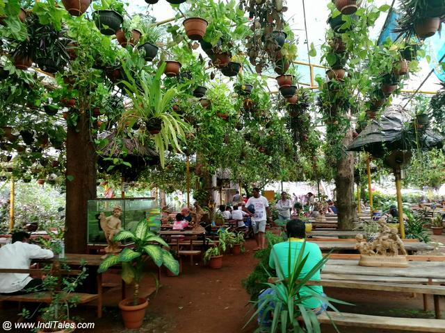 Jungle Garden Cafe at Mollem village