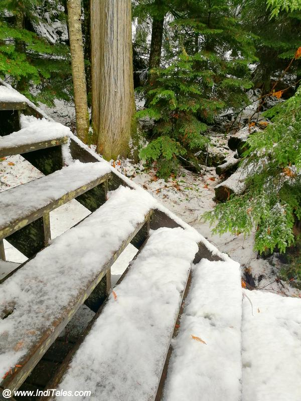 Snow covered wooden staircases - Whistler