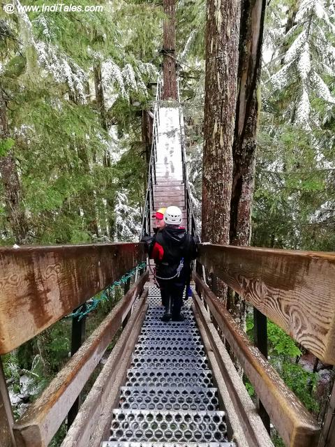 Treetop walkways and platforms - Whistler Zipline